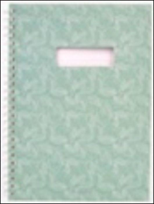 Caderno com Janela - Verde