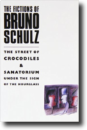 The Fictions of Bruno Schulz