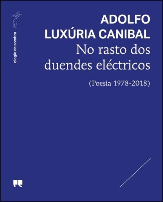 No Rasto dos Duendes Eléctricos (Poesia 1978-2018)