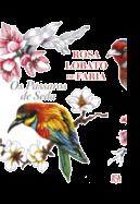 Os Pássaros de Seda