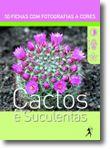 Cactos e Suculentas
