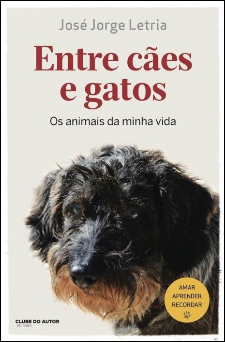 Entre Cães e Gatos